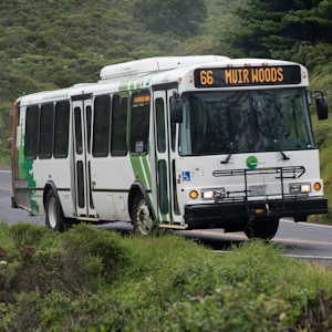 muir woods shuttle